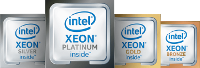 ION's PS StorageServer uses Intel Xeon Scalable Processors.